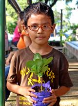Planting Boy